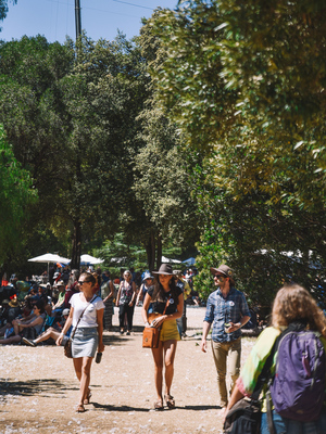 WOMADelaide 2018 - Jack Fenby